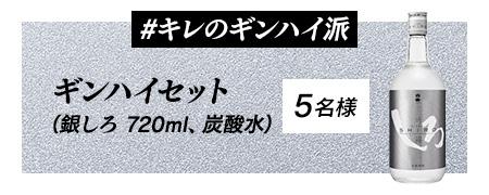 ギンハイセット(ボトル、炭酸)